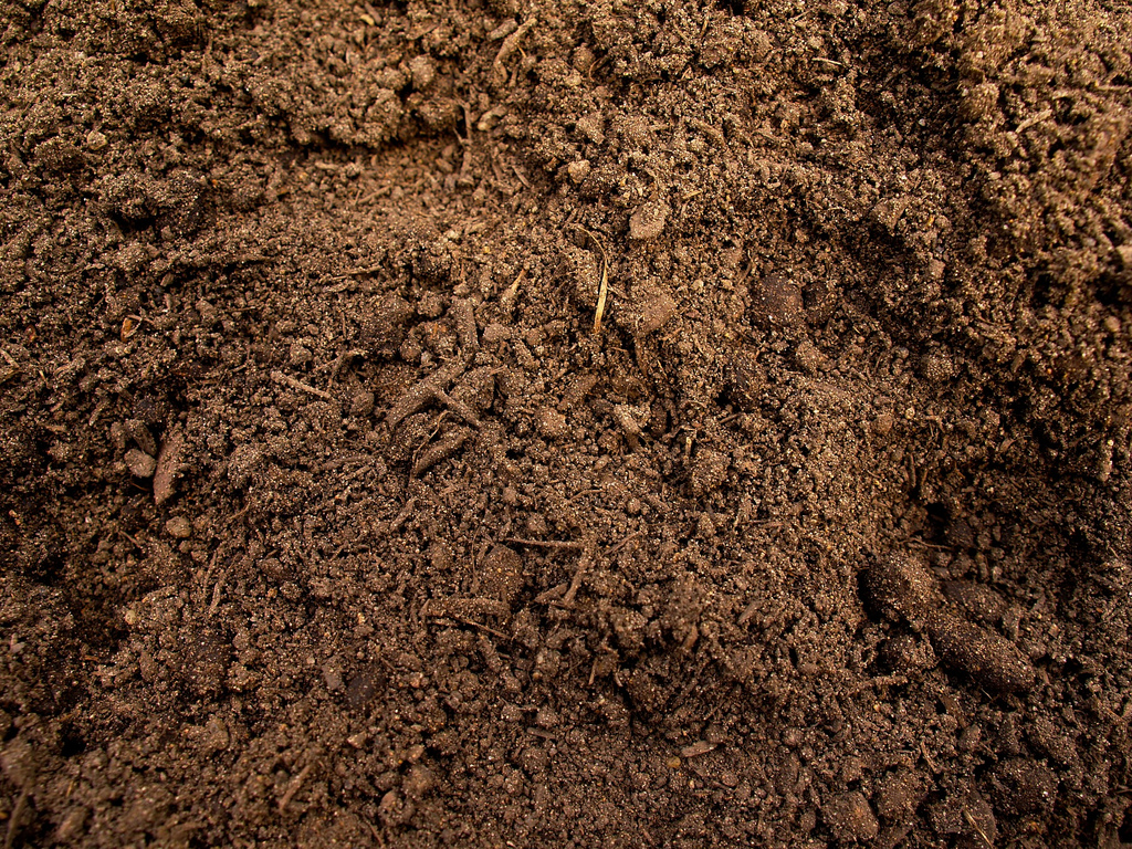All about soil be self sufficient for All about soil